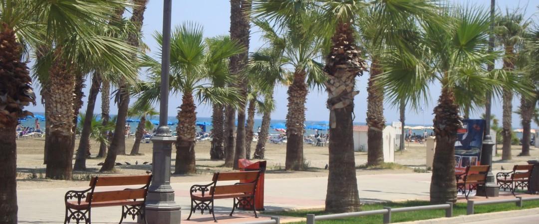 tomar un paseo por sus preciosas playas de Larnaca y visitar algunos de los populares restaurantes de mariscos cerca.