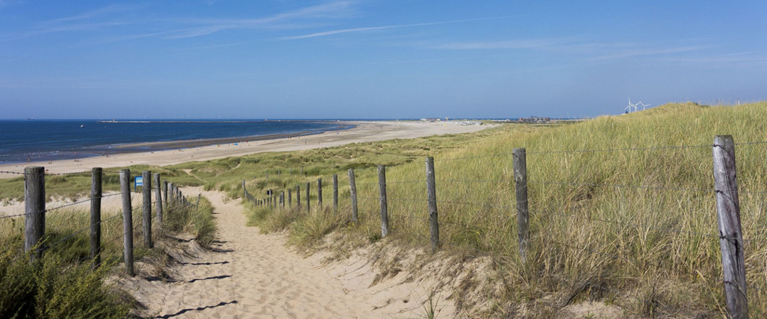 Spend some time by the sea - the Netherlands is home to lots of sand dunes and long stretches of beach.