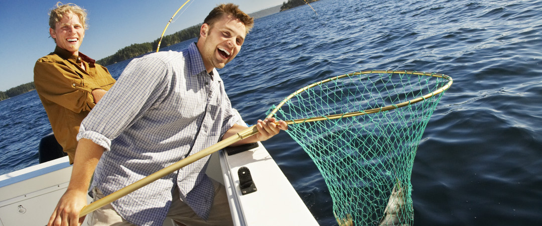 Like the water? Go salmon or trout fishing. Or spend the day on a pristine lake - hire a boat and go sailing.
