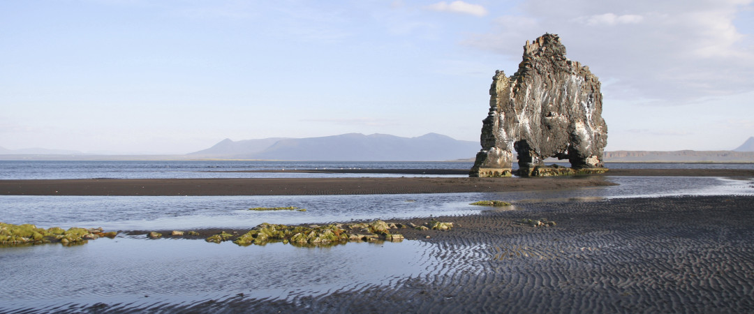 Rising 50 feet from the sea, Hvítserkur resembles a dinosaur drinking from the ocean.