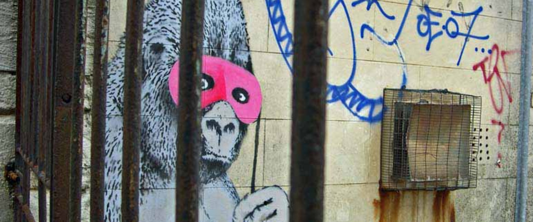 Our blogger will visit Bristol, the home of world famous graffiti artist Banksey!