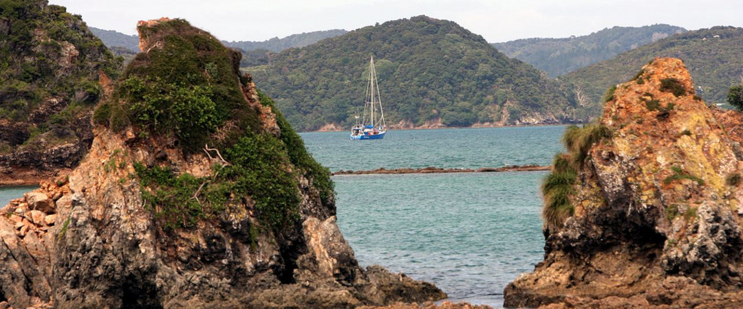 Experience the stunning bay of islands on New Zealands biggest houseboat - with snorkeling and dolphin spotting!