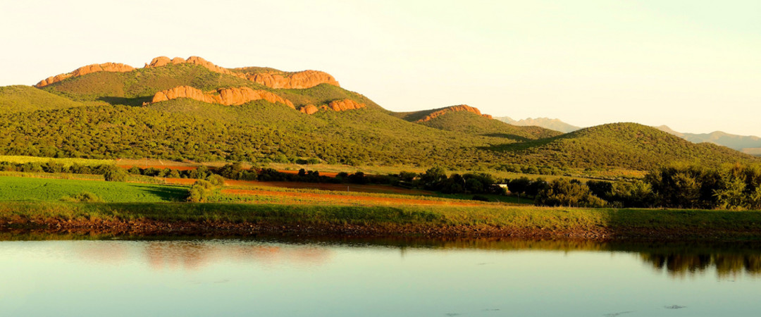 Oudtshoorn: ostriches, the great outdoors and great hostelling.