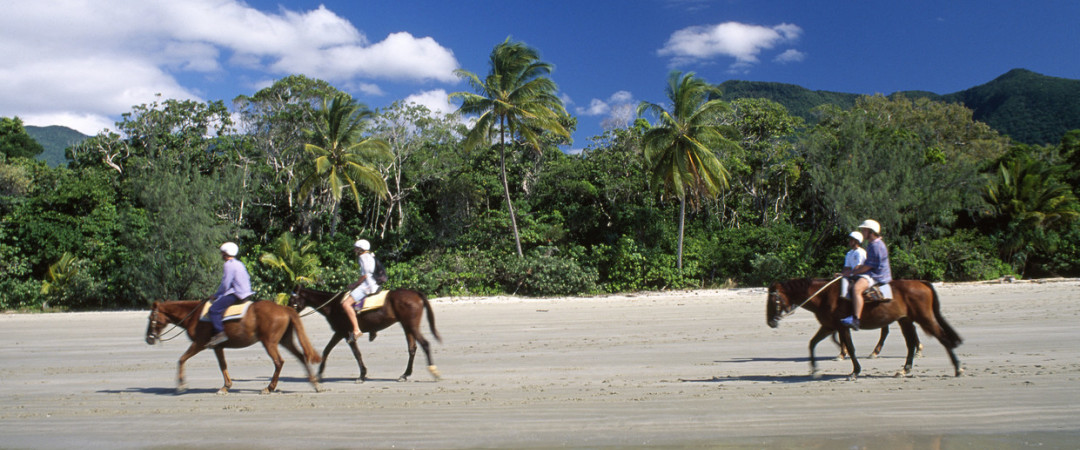 Stay at our beach front hostel where the rainforest meets the sea at Cape Tribulation, Australia.