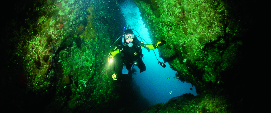 Discover the best sub-tropical diving in the world at the Poor Knights Islands