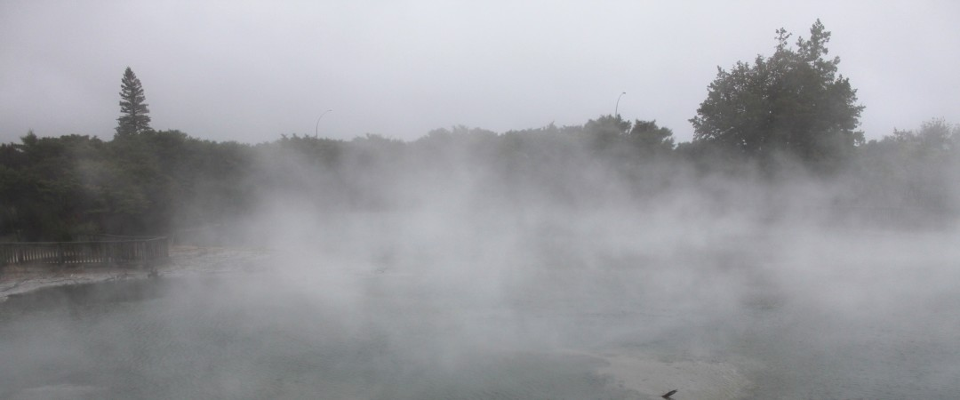 Our hostel places you just footsteps away from Kuirau Park and its hissing, steaming and bubbling geothermal activity.