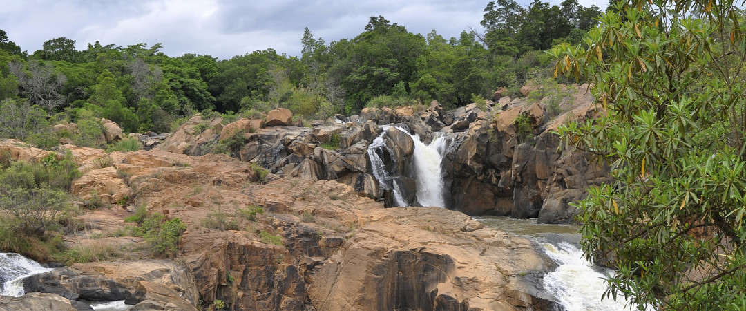 Lowveld National Botanical Garden includes a tropical rainforest section that has about 600 indigenous plant species.