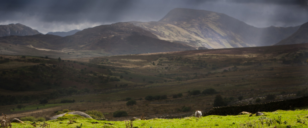 Wales offers a breathtaking landscape where you can hike through pastureland or climb mountains.