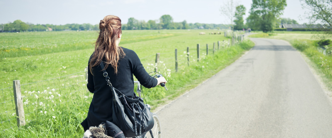 Swap your car for a bicycle in the Netherlands and explore the countryside.