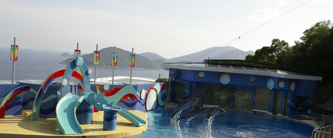 Visit Ocean Park, Hong Kongs unmissable and iconic marine life theme park!
