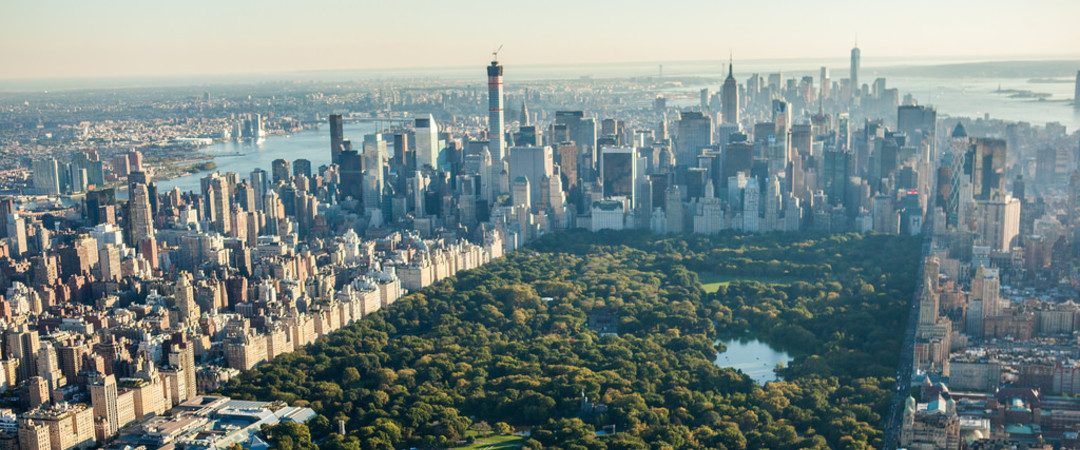 Admire the urban beauty of Central Park, an emerald among a metropolis.