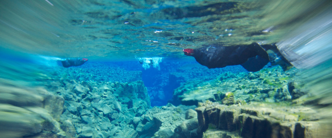 Day tour Snorkelling at Silfra