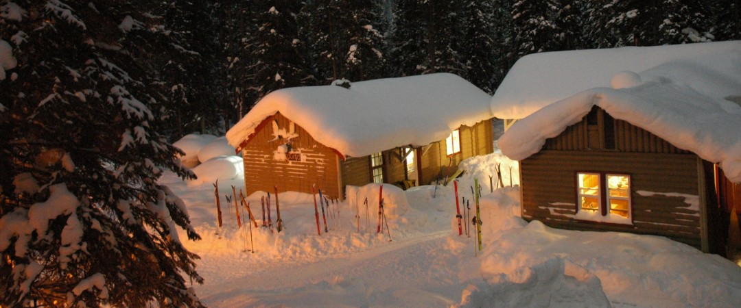 Enjoy the serenity and beauty of the wilderness while staying in rustic log cabins.