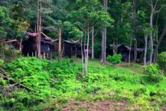 Nusa Holiday Village-Taman Negara Malaysia