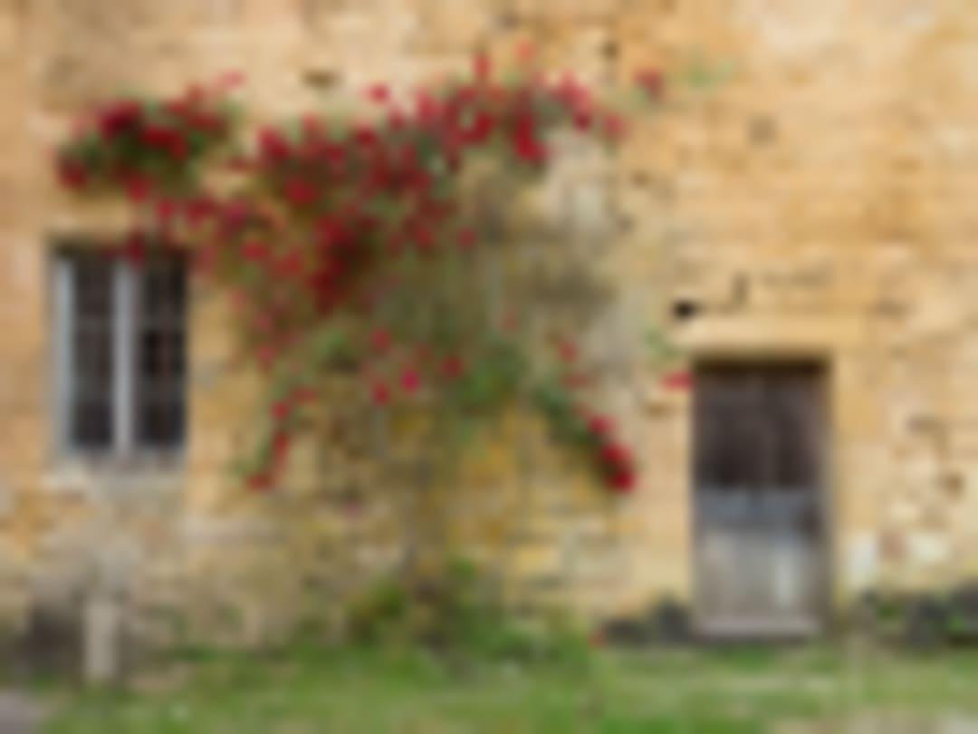 Auberge de jeunesse Hi Cadouin - Cadouin - France