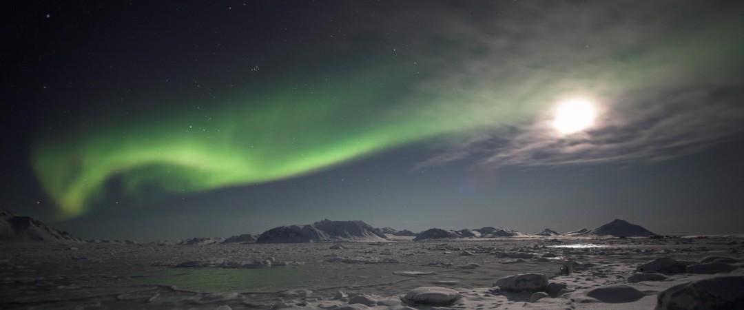 no tienes que ir a Islandia remota para ver las espectaculares Northern Lights - puede obtener una visión de nuestro hostal la azotea del centro de la ciudad.