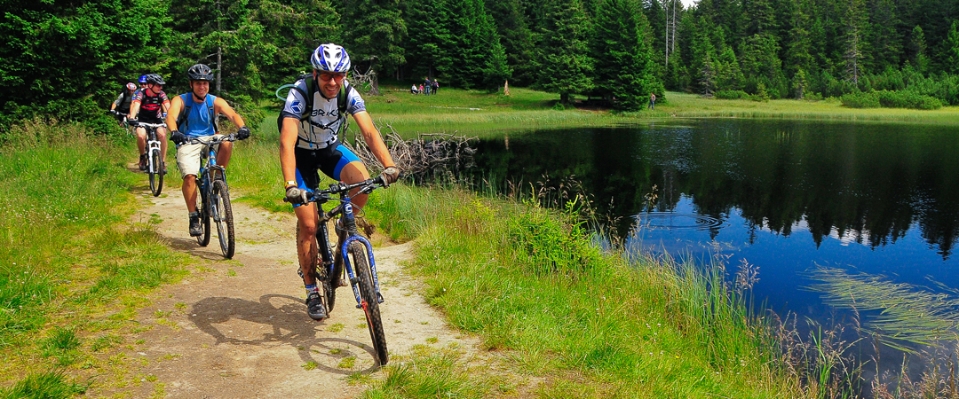You are invited to try the many biking trails which range from simple to more challenging ones.