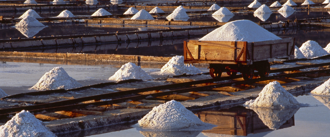 The cultural site of Sečoveljske salt pans are marked by an ancient tradition of producing salt, which shaped the unique landscape you can see today.
