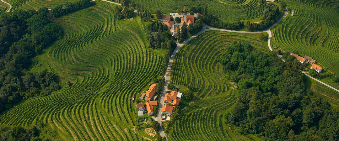 Aerial  photos show that Slovenia has over 21.5 acres of vineyards, where they produce over 90 million litres of wine per year.