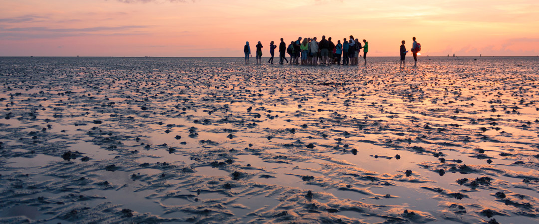 Youth Hostel of Jever is at an ideal location to experience the World Heritage Wadden Sea.