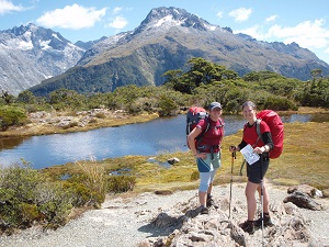 Key Summit on the Routeburn Track.