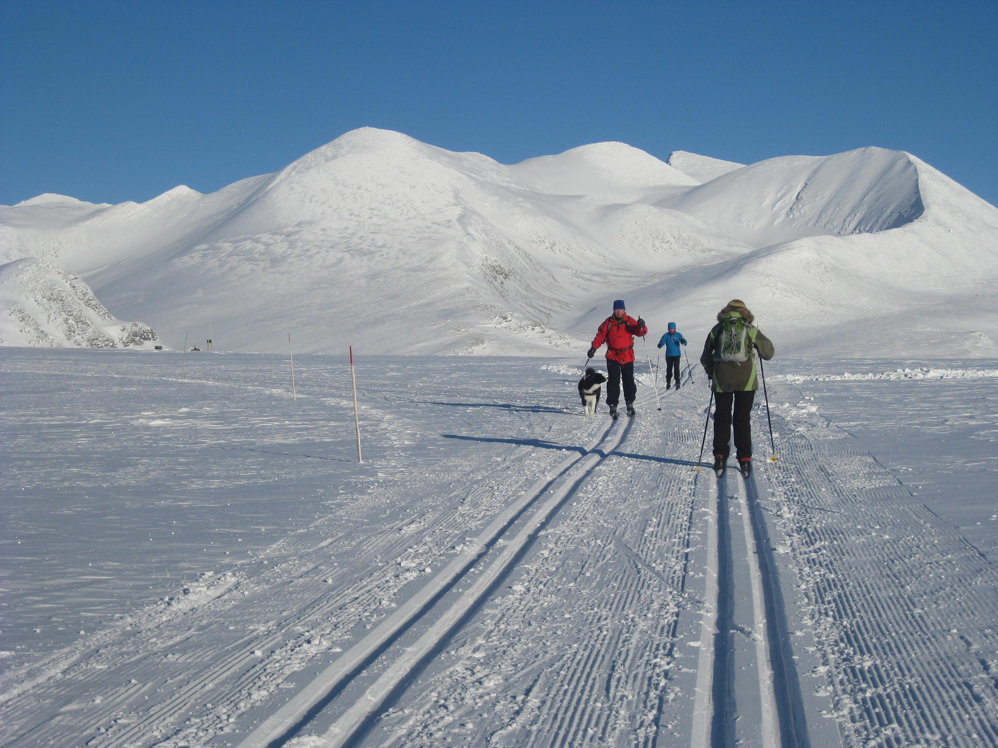 bergen turist Ski