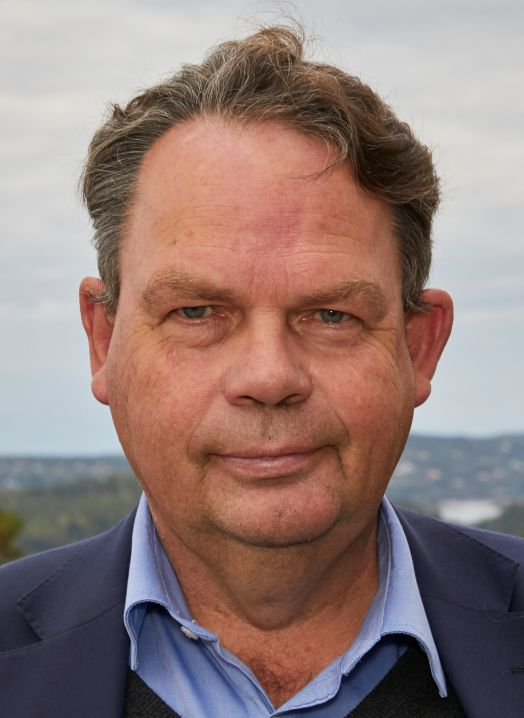 Profilbilde: Arne Dessen