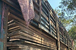 Traders smuggled timber out of Preah...