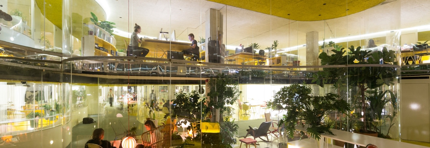 People behind glass and plants