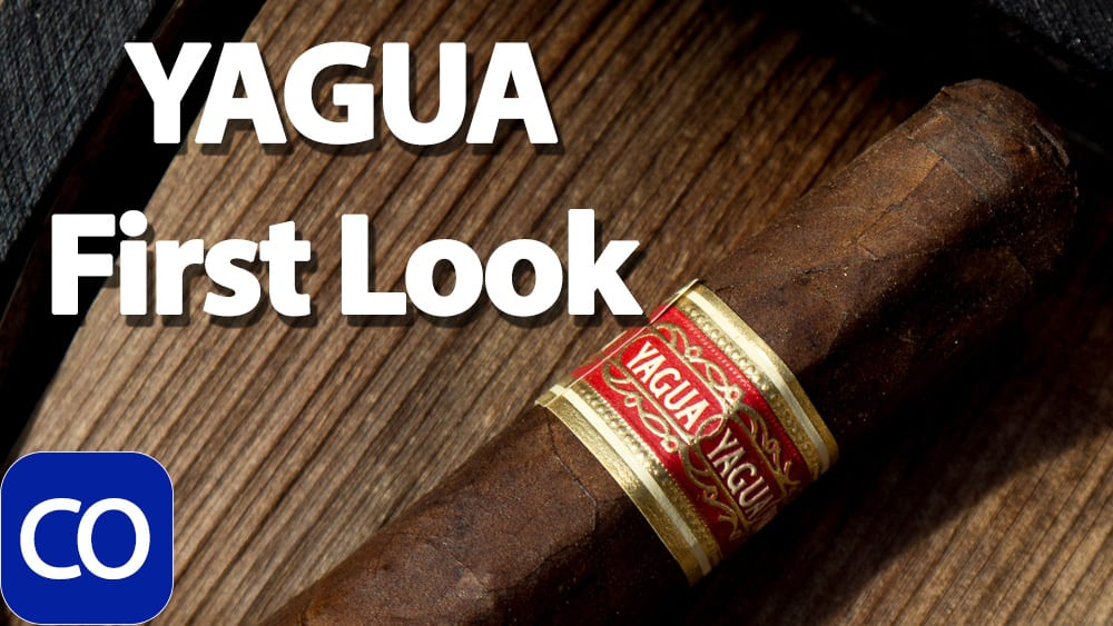 J.C. Newman YAGUA First Look Featured Image
