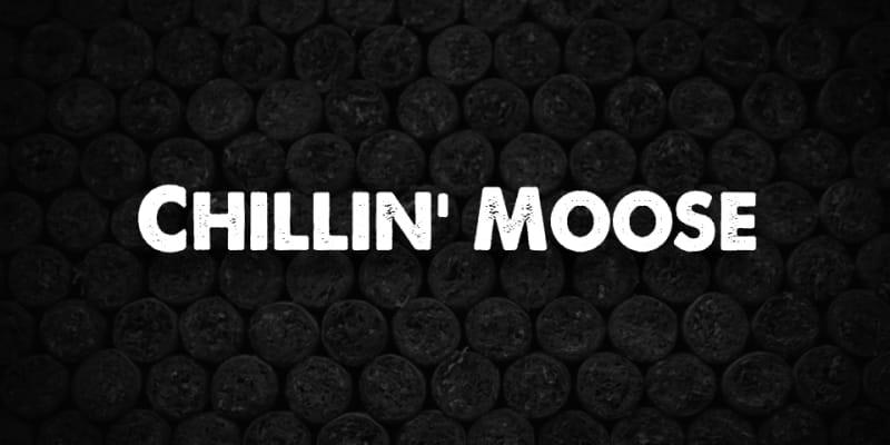 Chillin Moose header