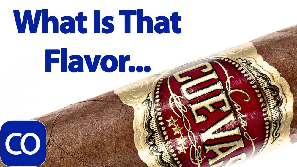 Casa Cuevas Habano Robusto Cigar Review Featured Image