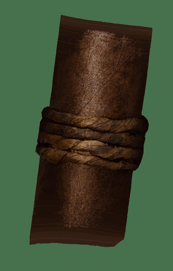 CAO Amazon Basin Band Image
