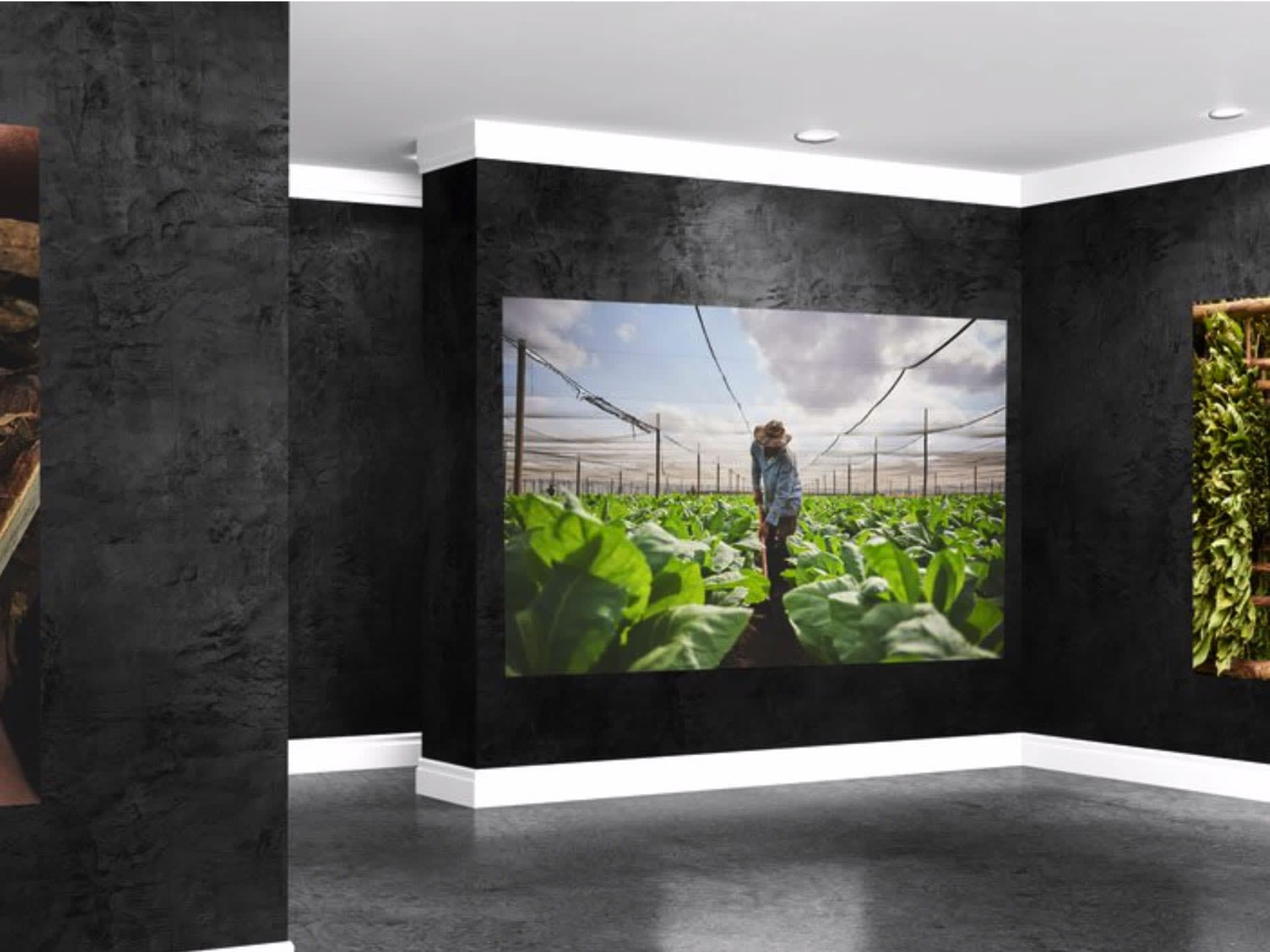 An Art Gallery Dedicated to Artistry of Cigars Featured Image