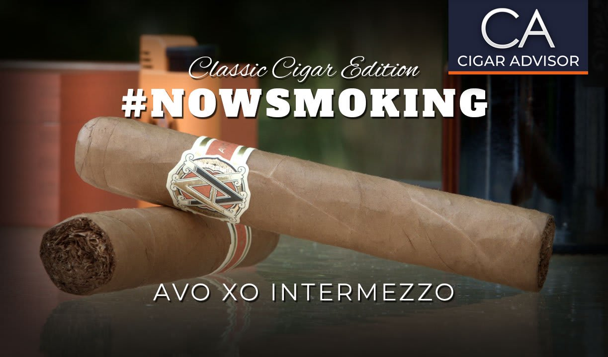 #nowsmoking: Avo XO Intermezzo Featured Image