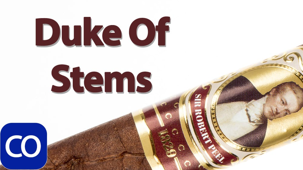 Protocol Sir Robert Peel Maduro Toro Cigar Review Featured Image