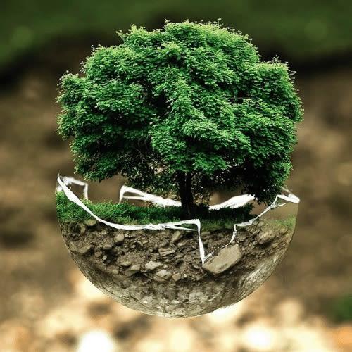 umwelt-schützen