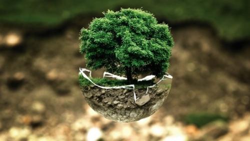 Die Reparatur vom iPhone XS schont die Umwelt