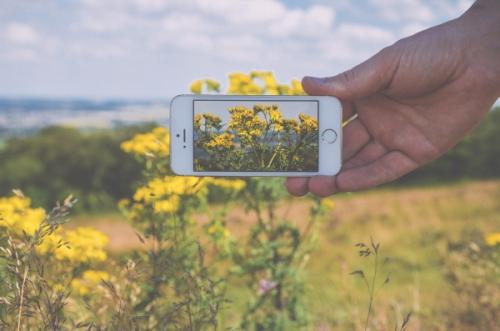 Smartphone Natur