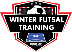Winter Futsal Training logo