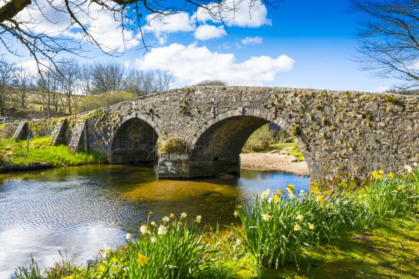 Top 5 Places to Visit on Dartmoor