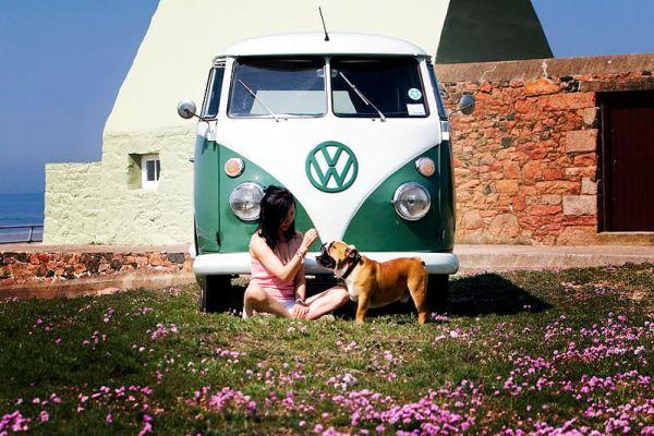 Viaggiare in camper con il tuo cane