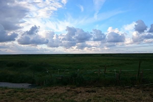Roadtrip through the Netherlands - Part Two