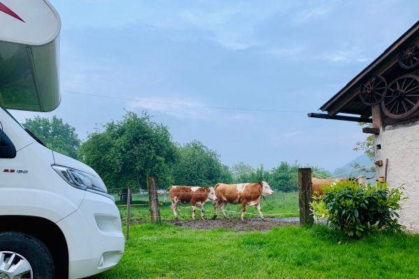 Saskia, Lex, Gijs en Teun trekken in 20 weken door Europa: Slovenië maakt zelfs indruk met regen en 12C°
