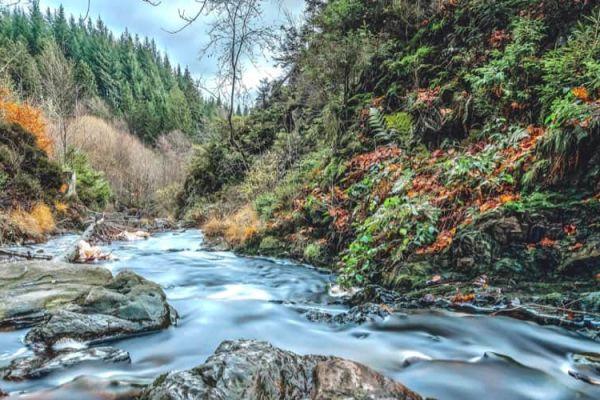 Natuurcamping Ardennen
