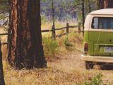 Top 5 campings in Nederland om te kamperen in de herfst