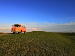 Kate Camperbus – On the road with your own Volkswagen bus!