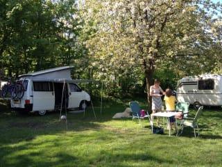 Volkswagen T4 Westfalia – Tolles Camping auf 4 Rädern!