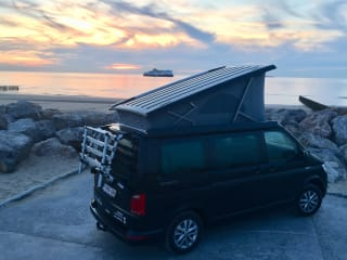 NEW VW California (Ocean 2019)