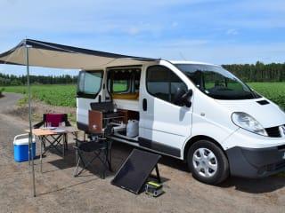 Otis – Renault Trafic - Wohnmobil Otis